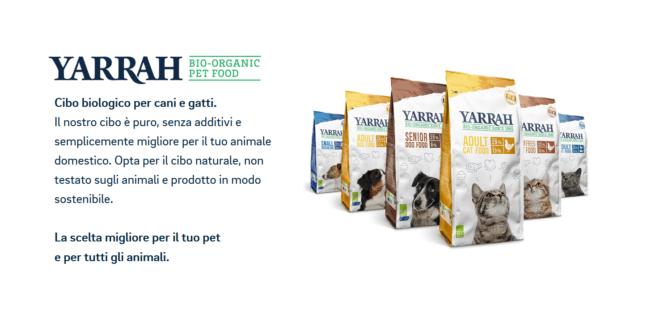 Croccantini E Crocchette Del Supermercato Per Gatti Cose Di Gatti