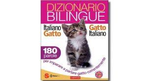 dizionario-bilingue-italiano-gatto-gatto-italiano