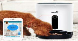 distributore-automatico-di-cibo-per-gatti-pet-feeder