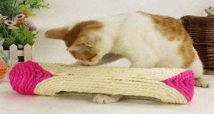 tiragraffi-giocattolo-rullo-con-palle-per-gatto